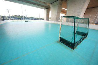 Flower Water Green Daikairo Park Futsal Ground