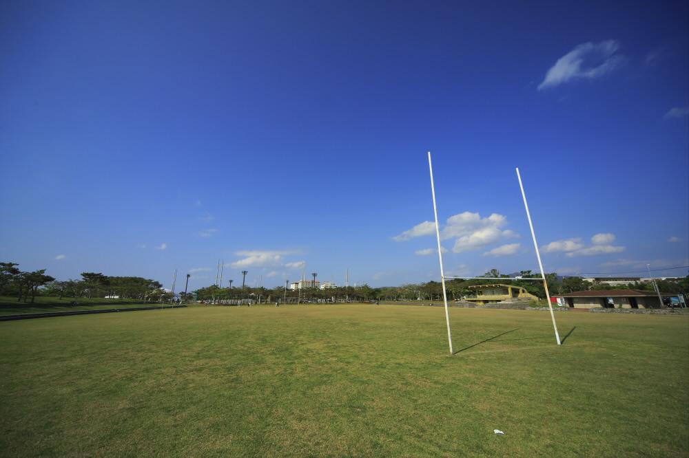多目的広場1(サッカー・ラグビー場)(21世紀の森公園内)
