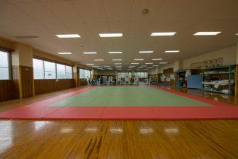 Ieson B&G Kaiyo Center (Budojo)