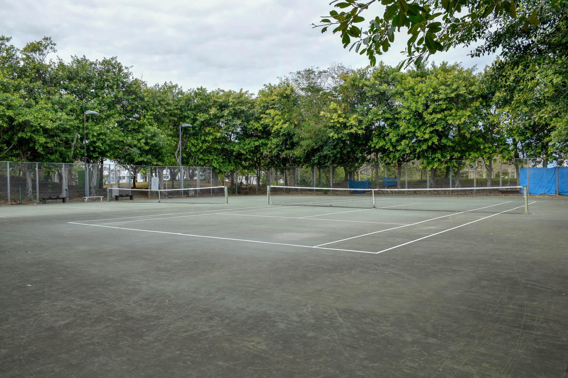松山公園 テニスコート