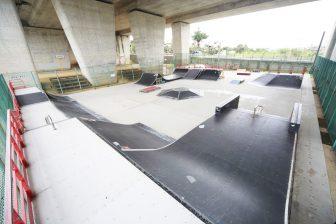 Flower Water Green Daikairo Park Stakeboard Ground